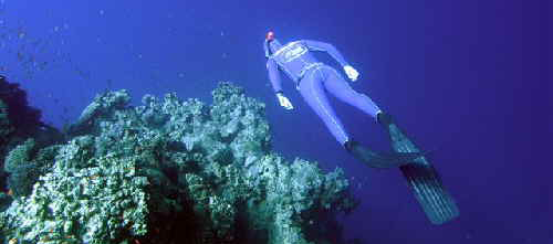 snorkeling wetsuits
